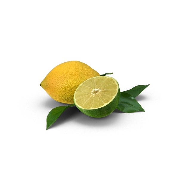 Lemon and Sliced Lime Object